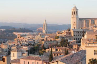 Control de plagas en Girona