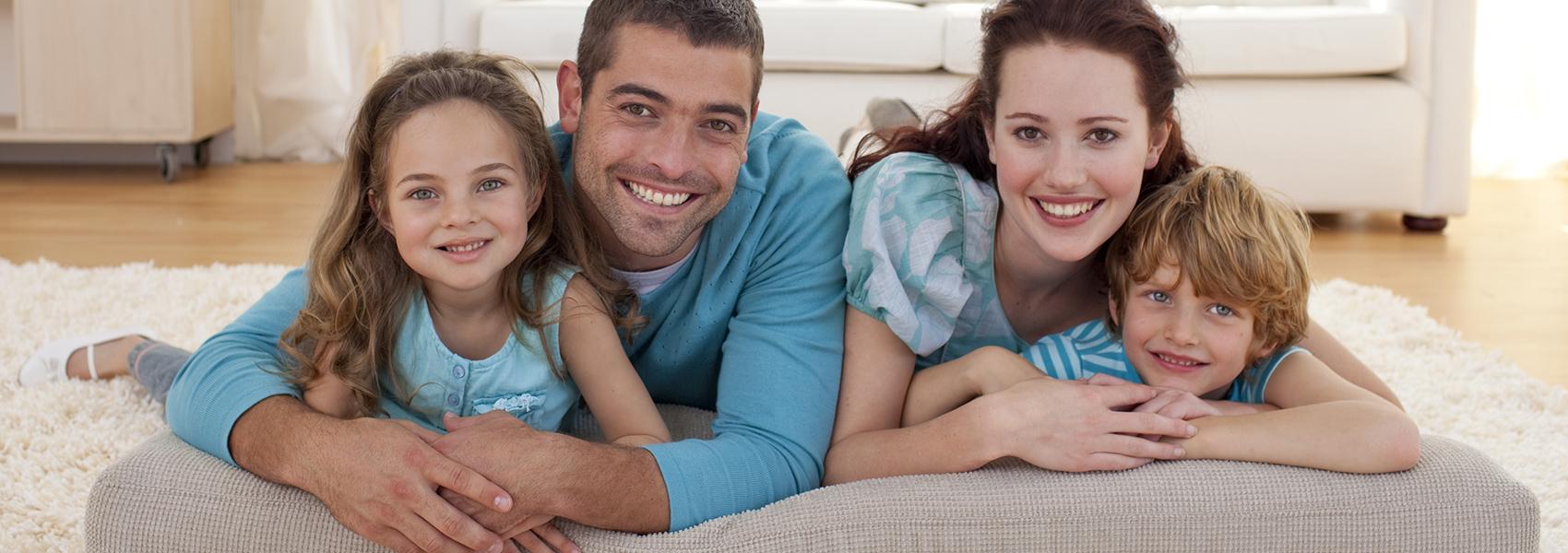control de plagas hogar